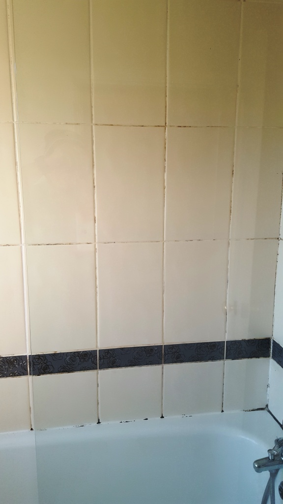 Ceramic bath tiles before refresh Hale Village